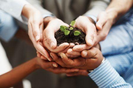 Organización y Efectividad Personal
